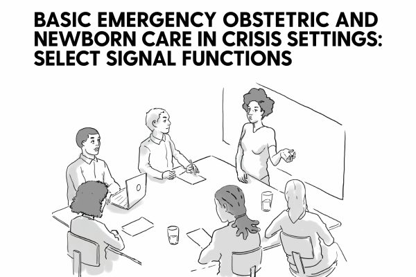 Illustration of six people around a table, text reads: basic emergency obstetric and newborn care in crisis settings: select signal functions